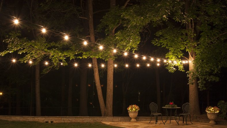 Lights Outdoors – Decorations and Being Safe